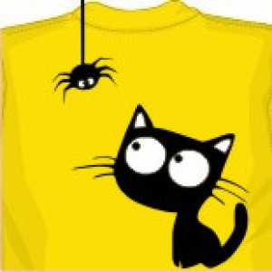 Кот и паучок